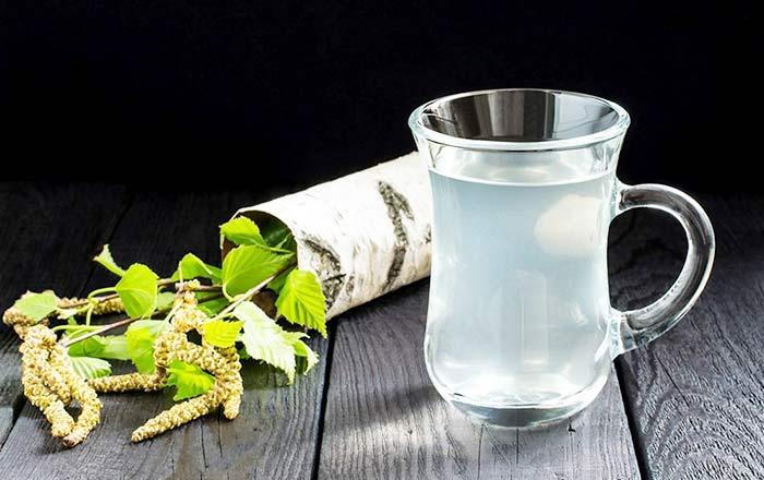 2 простых рецепта приготовления самогона на березовом соке